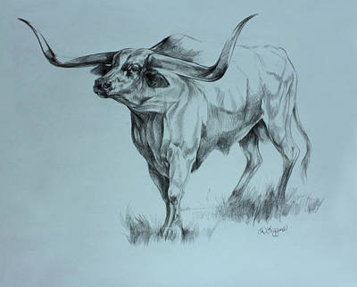 Texas Longhorn Original by Derrick Higgins