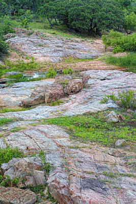 Texas Marble Landscape Art Print by Linda Phelps