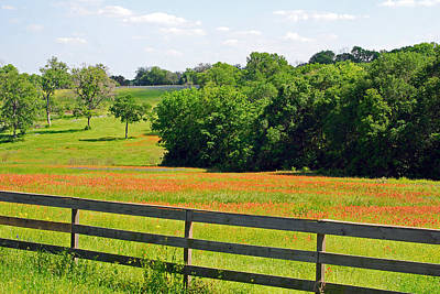 Photograph - Texas Prairie - Gentle Hills In Springtime by Connie Fox
