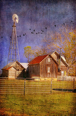 Texas Ranch Art Print by Joan Bertucci