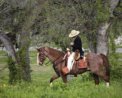 Texas Ranger Art Print