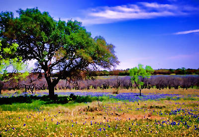Photograph - Texas Spring by David and Carol Kelly