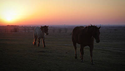 Photograph - Texas Sunrise by Diane Bohna
