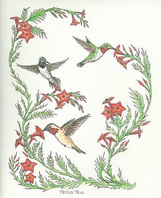 Rufous Hummingbird Painting - Texas Trio by Sue Bonnar