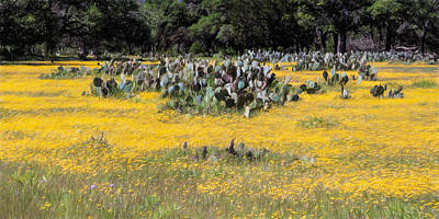 Photograph - Texas Wildflowers And Prickly Pear Cactus by David and Carol Kelly