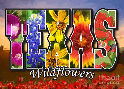 Painting - Texas-wildflowers by Tim Gilliland