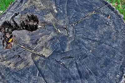 Transylvania Digital Art - Texture Wood. Next To Bran Castle - Dracula's Castle. by Andy Za
