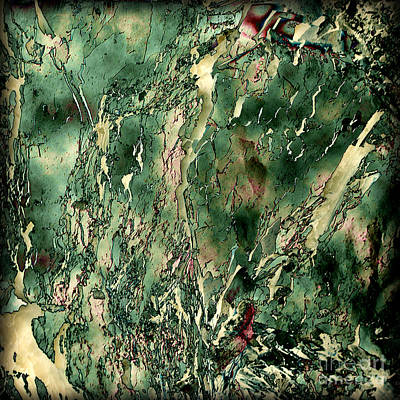 Photograph - Textured Abstraction by Liz  Alderdice