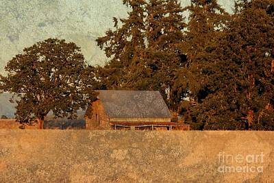 Photograph - Textured Barn by Erica Hanel