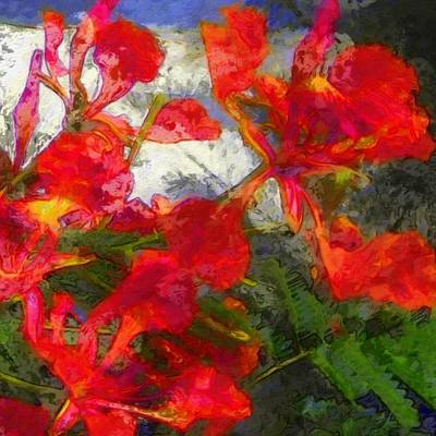 Painting - Textured Flamboyant Flowers - Square by Lyn Voytershark