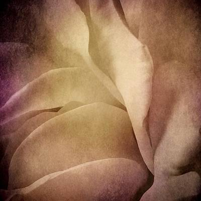 Photograph - Textured Rose Petals In Lilac by Patricia Strand