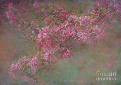 Sultry Plants - Textured Spring Blossoms by Arlene Carmel