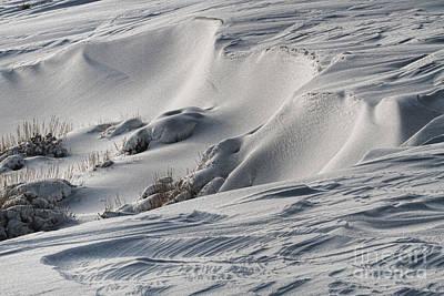 Textures Of Snow Art Print