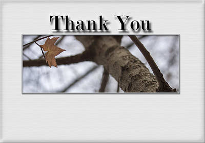 Different Points Of View Digital Art - Thank You Card - Saving The Last Moment by Becca Buecher