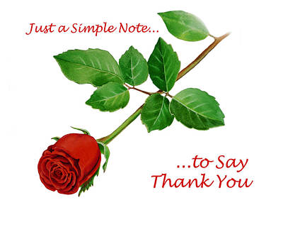 Roses Royalty-Free and Rights-Managed Images - Thank You Card   by Irina Sztukowski