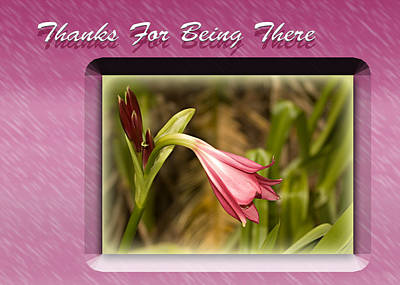 Photograph - Thanks For Being There by Carolyn Marshall