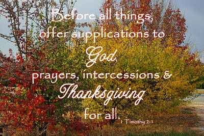 Photograph - Thanksgiving 1 Timothy 2 by Robyn Stacey