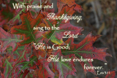Photograph - Thanksgiving Praise Ezra 3 by Robyn Stacey