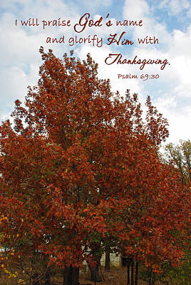 Photograph - Thanksgiving Praise Glorify God Psalm 69 by Robyn Stacey