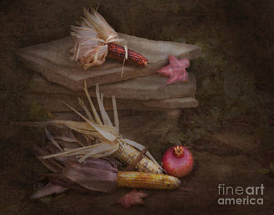 Photograph - Thanksgiving Still Life by Cindy Garber Iverson
