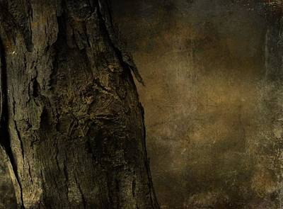 That Old Tree Art Print by Dan Sproul