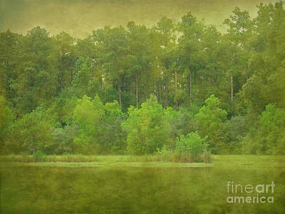 Photograph - That Special Green Light by Judi Bagwell