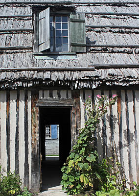 Photograph - Thatched Roof Door Plant 2 by Mary Bedy