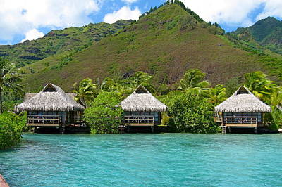 Photograph - Thatched Roof Hotel In Moorea by Denise Mazzocco