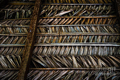 Thatched Roof Original by Liesl Marelli
