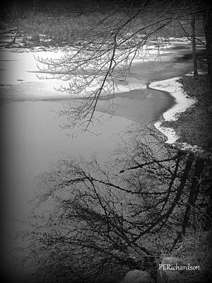 Photograph - Thaw by Priscilla Richardson