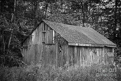 Photograph - The Abandoned Shed by Alana Ranney