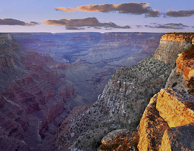 The Abyss Grand Canyon National Park Art Print by Tim Fitzharris
