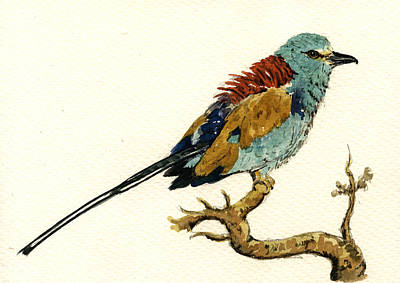 Nature Art Painting - The Abyssinian Roller Coracias Abyssinicus by Juan  Bosco