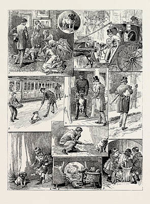 The Adventures Of The Dog Jim, 1889 1. Being Promised A Pet Art Print