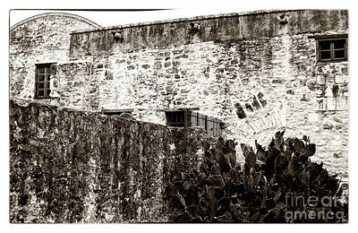 Photograph - The Alamo by John Rizzuto