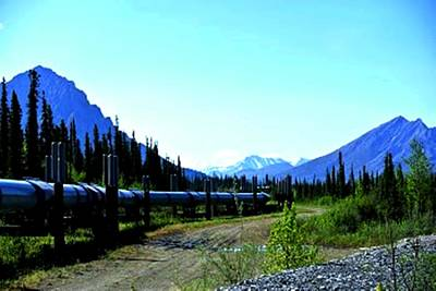 The Alaskan Pipeline Art Print by Diane Strain