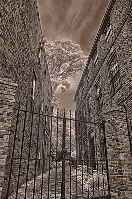 Massachusetts Photograph - The Alley 2 by Joann Vitali