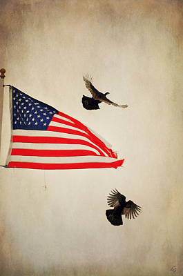 Photograph - The Almost National Birds by Emily Stauring