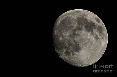 Astro Photograph - The Almost Supermoon by Holden Parker