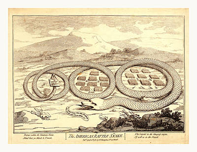 The American Rattle Snake, En Sanguine Engraving Shows Art Print by English School