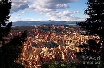 Photograph - The Ampitheater Bryce Canyon by Butch Lombardi