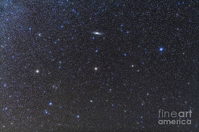 Photograph - The Andromeda Galaxy And Triangulum by Alan Dyer