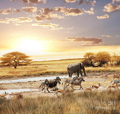 The Animals In Safari Art Print by Boon Mee