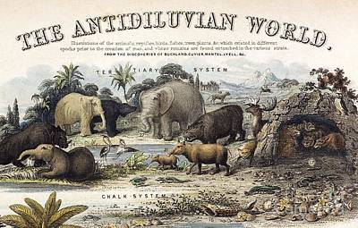 The Antidiluvian World, 1849 Art Print by Paul D. Stewart