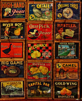Photograph - Lost Art Labels by Thom Zehrfeld