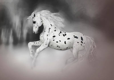 Painting - The Appaloosa by Valerie Anne Kelly