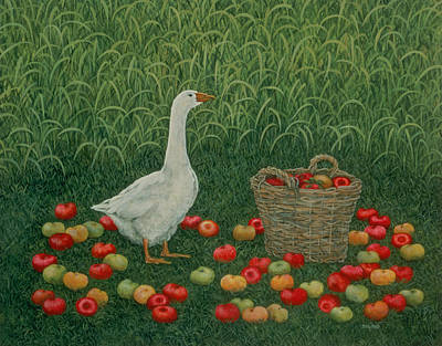 Ducks Painting - The Apple Basket by Ditz