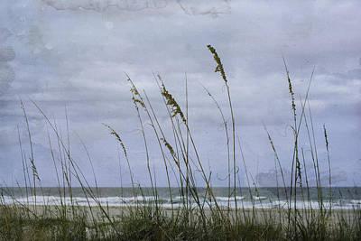 Photograph - The Approach by Judy Hall-Folde