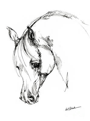 The Arabian Horse Sketch Art Print