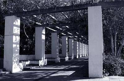 Photograph - The Arbor In Black And White by Lorraine Devon Wilke